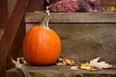 Brown stagionale e scena arancio di Halloween della zucca del portico immagini stock libere da diritti