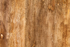 Brown stain on old cement wall background Stock Photos