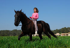 Brown stallion little girl Stock Photography
