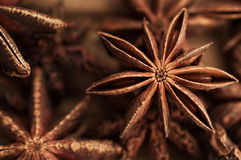 Brown star anise, asian spice against brown background. Brown star anise, east asian spice on dark brown background Stock Photos