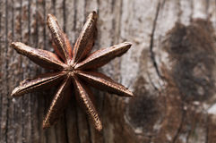 Brown star anise, east asian spice on wood background. Brown star anise, east asian spice on dark wood background Royalty Free Stock Image