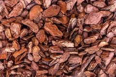 Brown starzy korowaci sosnowi kawałki drewno wieśniaka ogródu wystroju eco materiałów tła naturalna baza zdjęcia stock