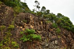 Brown Stone Cliff View with small tree on the side of road royalty free stock image