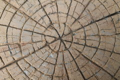 Brown stone with cracks on the surface Stock Photo