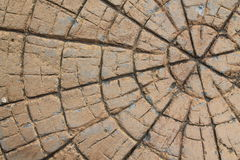 Brown stone with cracks on the surface Stock Photos