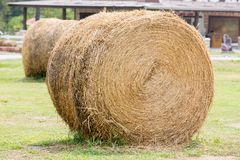 Brown Straw Stock Image