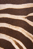 Brown striped zebra fur imitation, background Stock Photos