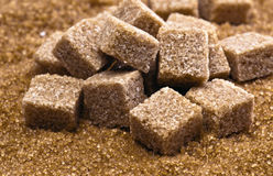Brown sugar. Cubes on powdered sugar royalty free stock photo
