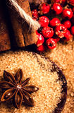 Brown sugar, anise star and cinnamon sticks on wooden table macro, still life. Food background with copy space for text. royalty free stock images