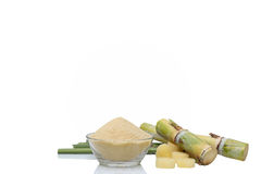 Brown Sugar in bowl and stump of sugar cane Stock Photography