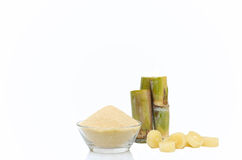 Brown Sugar in bowl and stump of sugar cane Royalty Free Stock Images