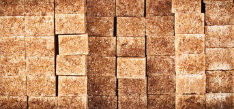Brown sugar cubes Stock Images