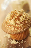 Brown sugar muffin Stock Images
