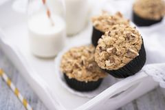 Brown sugar and walnuts cupcakes Stock Images
