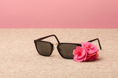 Brown Sunglasses on canvas Stock Images