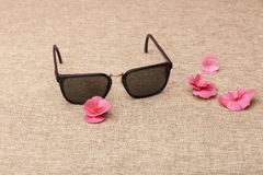 Brown Sunglasses on canvas Royalty Free Stock Photography