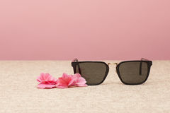 Brown Sunglasses on canvas Royalty Free Stock Photos