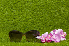 Brown Sunglasses on greeen grass. Brown Sunglasses and flower on greeen grass background Stock Photo
