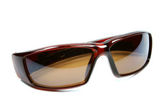 Brown sunglasses isolated Stock Image