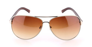Brown sunglasses Stock Images