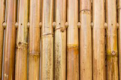 Brown sunny bamboo textured fence for background. royalty free stock photos