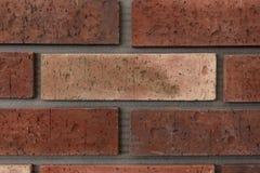 Brown, symetrycznej i miarowej ściana z cegieł tekstura, zdjęcie royalty free