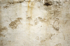 Brown and Tan Rustic Background Texture. Closeup image of white paint peeling off a dark brown wall. Grunge detail is ideal for backgrounds or overlays royalty free stock photography