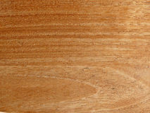 Brown teak wood. Details of surface of brown teak wood Stock Images