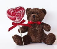 Brown teddy bear Stock Image