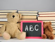 Brown teddy bear and empty black board in red frame on the background of pile of books. Brown teddy bear and black board in red frame on the background of pile royalty free stock image