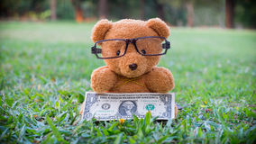 Brown teddy bear holding dollar banknote. Royalty Free Stock Image