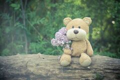 Brown Teddy Bear Holding Pink Flower Bouquet royalty free stock image