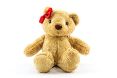 Brown teddy bear. Royalty Free Stock Images