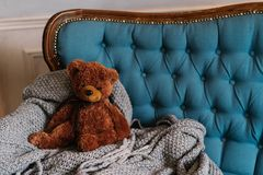Brown teddy bear on luxury sofa. Coziness and domestic atmosphere. Toy on grey blanket at couch. Soft fluffy toy for child royalty free stock photos