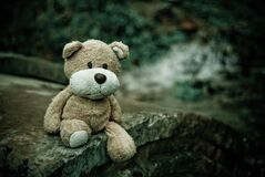 Brown Teddy Bear Sitting on Edge of Pavement Royalty Free Stock Photography