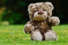 Brown Teddy Bear Sitting on Grass Royalty Free Stock Photography