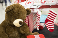 Brown Teddy Bear sitting next to Christmas Holiday Stockings Stock Photos