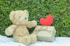 Brown teddy bear sitting on white fabric. Brown teddy bear sitting on white fabric with red heart yarn and gift box. Tree leaf bushes green fence, Texture Royalty Free Stock Photo