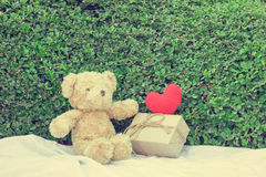 Brown teddy bear sitting on white fabric. Brown teddy bear sitting on white fabric with red heart yarn and gift box. Tree leaf bushes green fence, Texture Stock Image