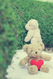 Brown teddy bear sitting on white fabric. Brown teddy bear sitting on white fabric with red heart yarn for send to teddy bear at standing backside Royalty Free Stock Photography