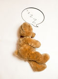 Brown teddy bear with speech bubble lying on floor Royalty Free Stock Photos