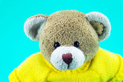 Brown Teddy bear toy wear yellow shirts on green. Background royalty free stock image