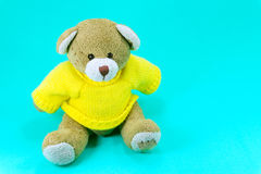 Brown Teddy bear toy wear yellow shirts sitting on green. Background royalty free stock image