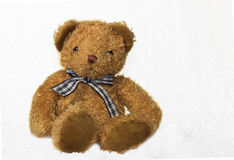 Brown teddy bear on white background Royalty Free Stock Photos