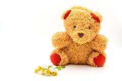 Brown teddy bear on white stock image