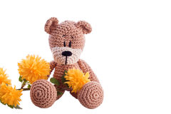 Brown teddy bear Stock Photos