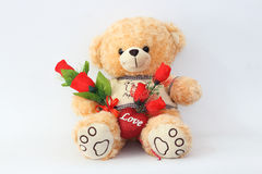 Brown teddy bears and red roses. Stock Photo