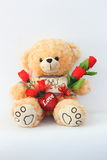 Brown teddy bears and red roses. Stock Image