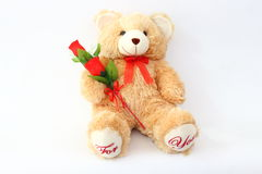 Brown teddy bears and red roses. Royalty Free Stock Photography