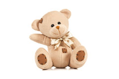Isolated Brown Teddy pointing the way. On White Background Royalty Free Stock Photography